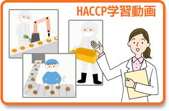 HACCP学習動画